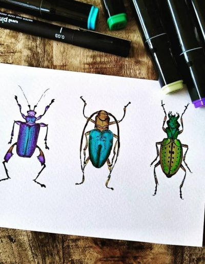 The Three Beetles