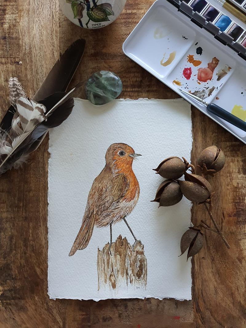 maandvogel roodborst 1